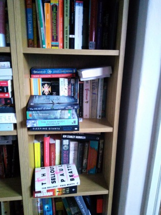 My to-read bookcase